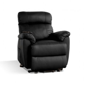 Trieste leather chair